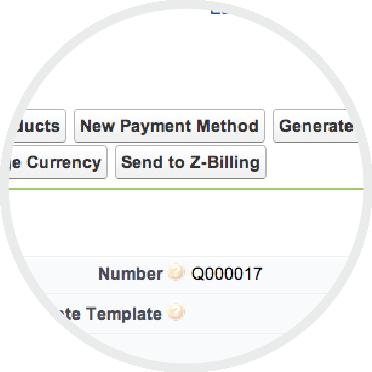 z-finance-chartOfAccounts-10.png